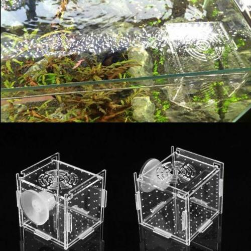 Aquarium Box Hatch Breeder Fish