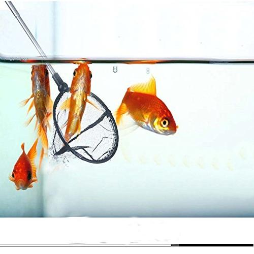 """Owncons Inch Aquarium with Extendable 5-17.5"""" Handle for Fish"""