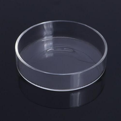 Aquarium Clear Glass Shrimp Dish
