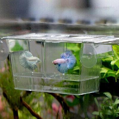 Aquarium Fish Tank Guppy Double Breeding Breeder Rearing Tra