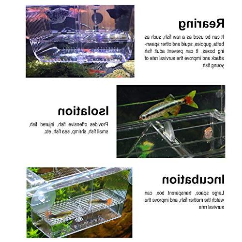Boxtech Aquarium Tank Acrylic Divider Small Fishes Clownfish Guppy