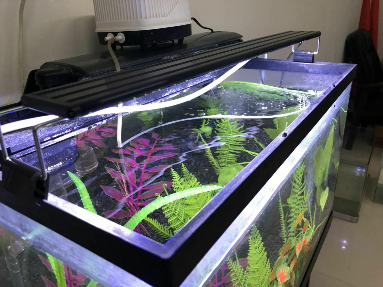 aquarium fish tank led overtank slim luminaire