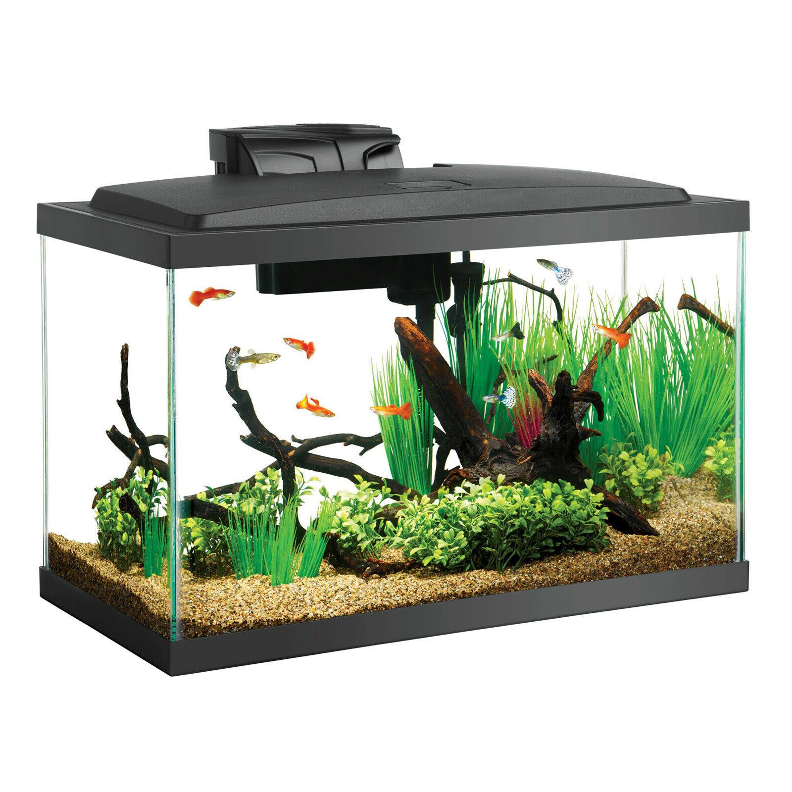 aquarium fish tank starter kits