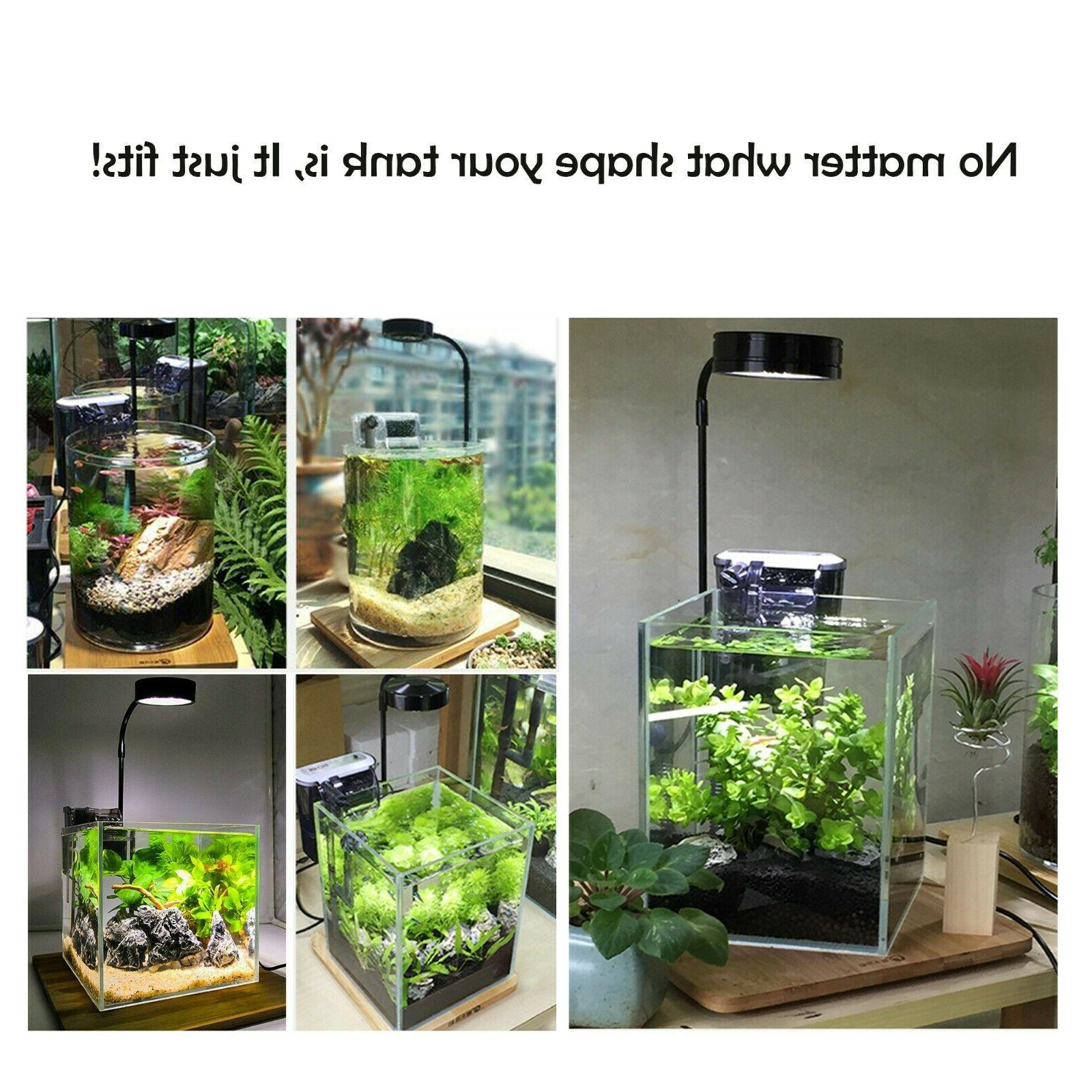 Nano Full Spectrum LED Plants