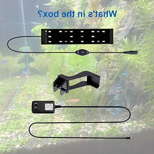 WOTERZI LED Clip for Inch Fish Blue LEDs