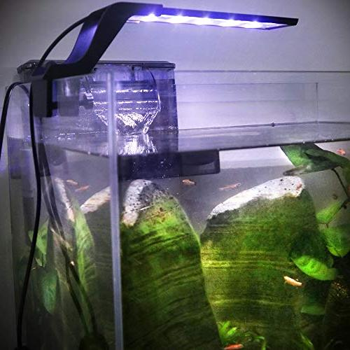 WOTERZI LED Aquarium Clip on Fish Light Bracket for 10-18 Inch Freshwater Fish White Blue