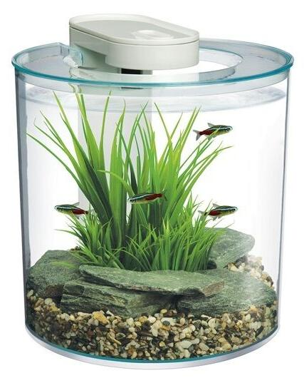 aquarium starter kit