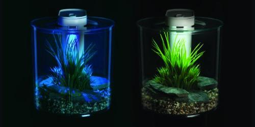 Marina Aquarium Starter Kit