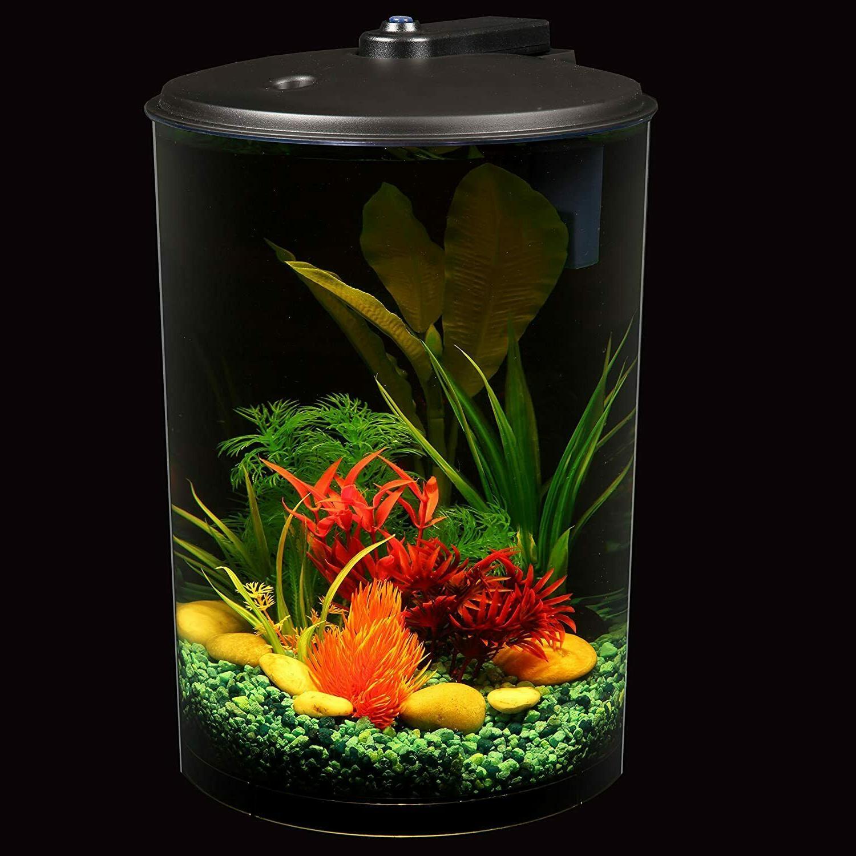 Koller Products 3-Gallon Aquarium Filter & Lighting