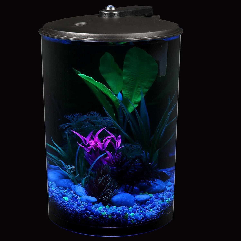 Koller Products AquaView 3-Gallon Aquarium with Filter & LED