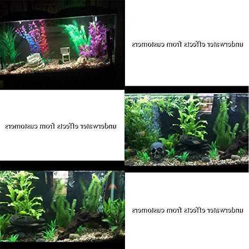 Plants, Betta Fish Plant Fish Tank Aquatic Water Grass,