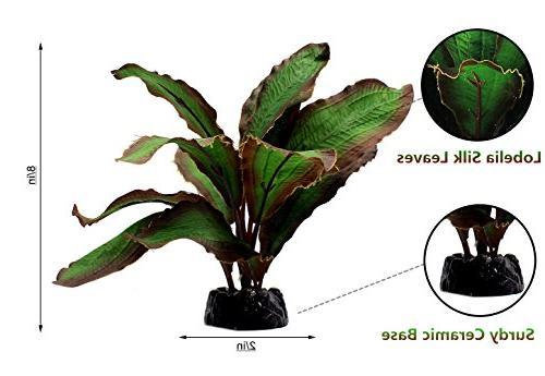 ZAZALUM Plants, Fish Fish Aquatic