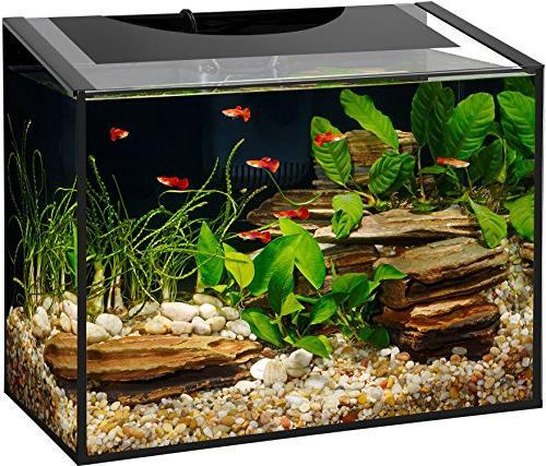 ascent frameless aquarium kit
