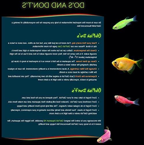 GloFish Barrels Ornament for Aquarium Large