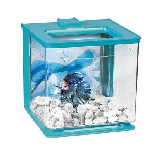 Aquarium - 2.5
