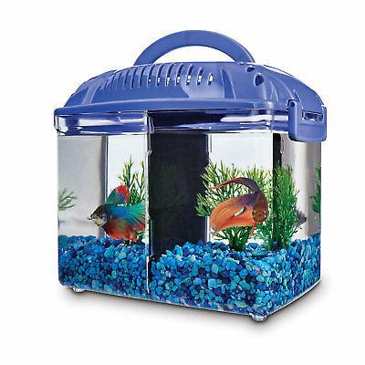 betta fish dual habitat tank