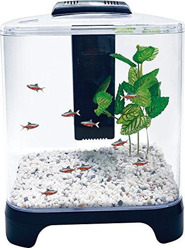betta fish tank aquarium kit