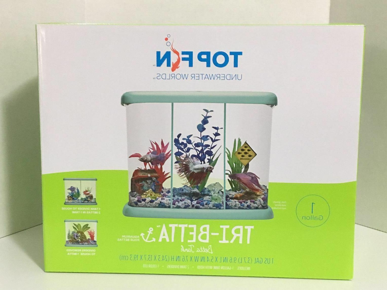 betta fish tank aquarium tri beta w