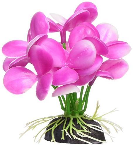 betta pink orchid aquarium plastic