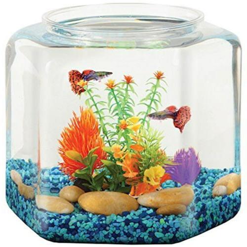 bettatank 2 gallon hex fish bowl bl20hpet