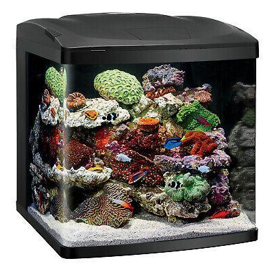 biocube aquarium