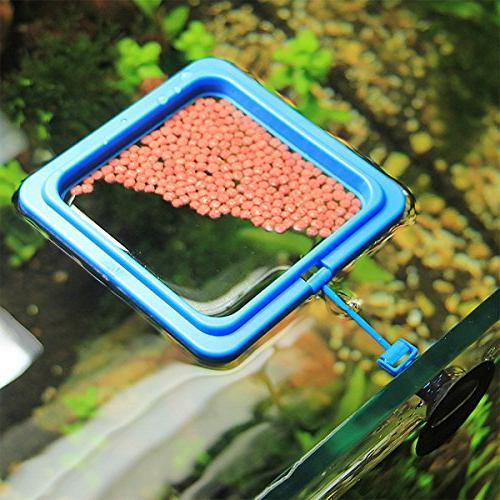 Timiy Blue coloe Fish Feeding Tank Ring Food