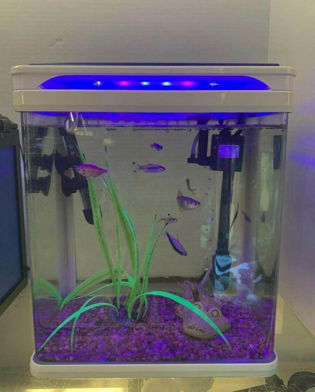 Camry Q3-320 5 aquarium