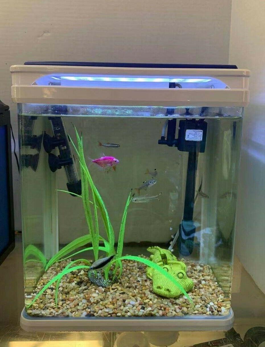 camry q3 320 5 gallon aquarium
