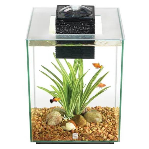 chi aquarium kit 5 gallons