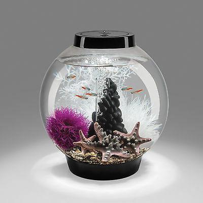biOrb Gallon Classic Aquarium Tank