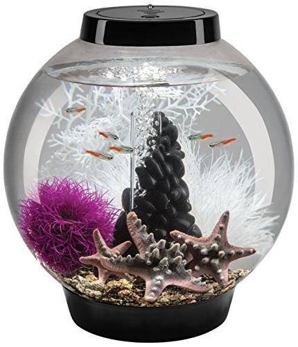 classic aquarium tank