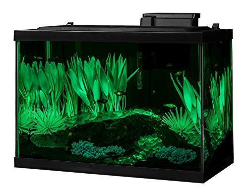Tetra Aquarium Gallon Fish Includes and Decor