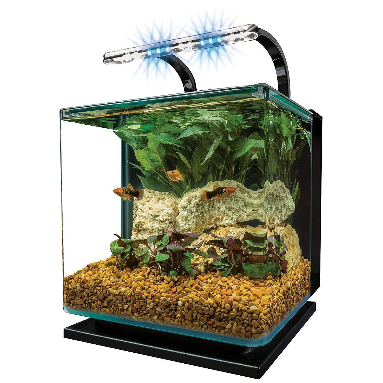 contour glass aquarium kit with rail light