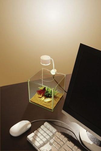 Marina Glass Kit