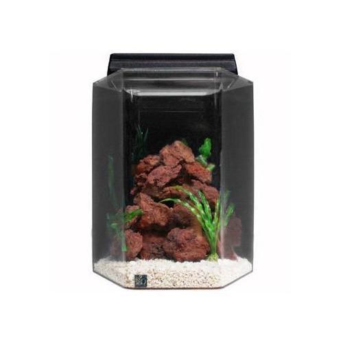deluxe hexagon acrylic aquarium combo