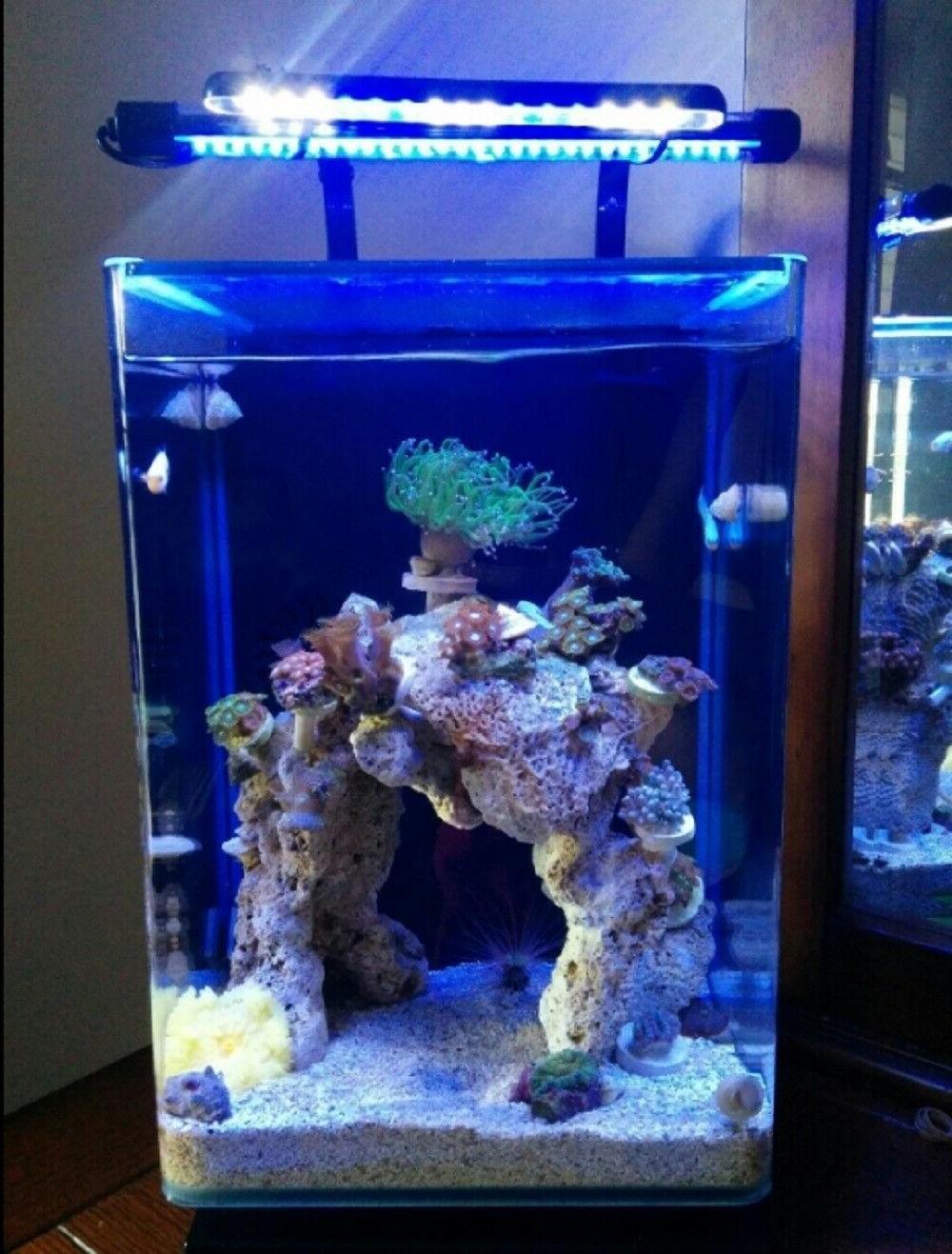 Modern 5 Black Desktop Glass Fish Tank Filt