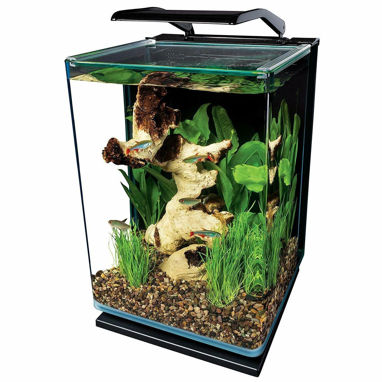 Modern 5 Gallon Black Desktop Fish Tank Starter Kit Goldfish Filt