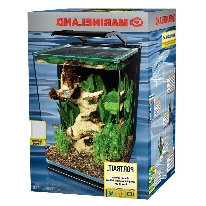 desktop glass fish tank starter kit goldfish