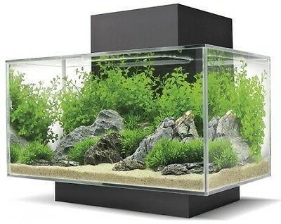 Fluval Edge Aquarium 21 6