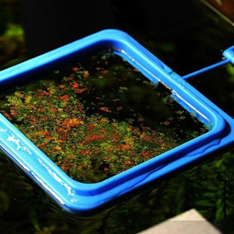 Feeding Ring Aquarium Fish Tank Tary Feeder Black Blue