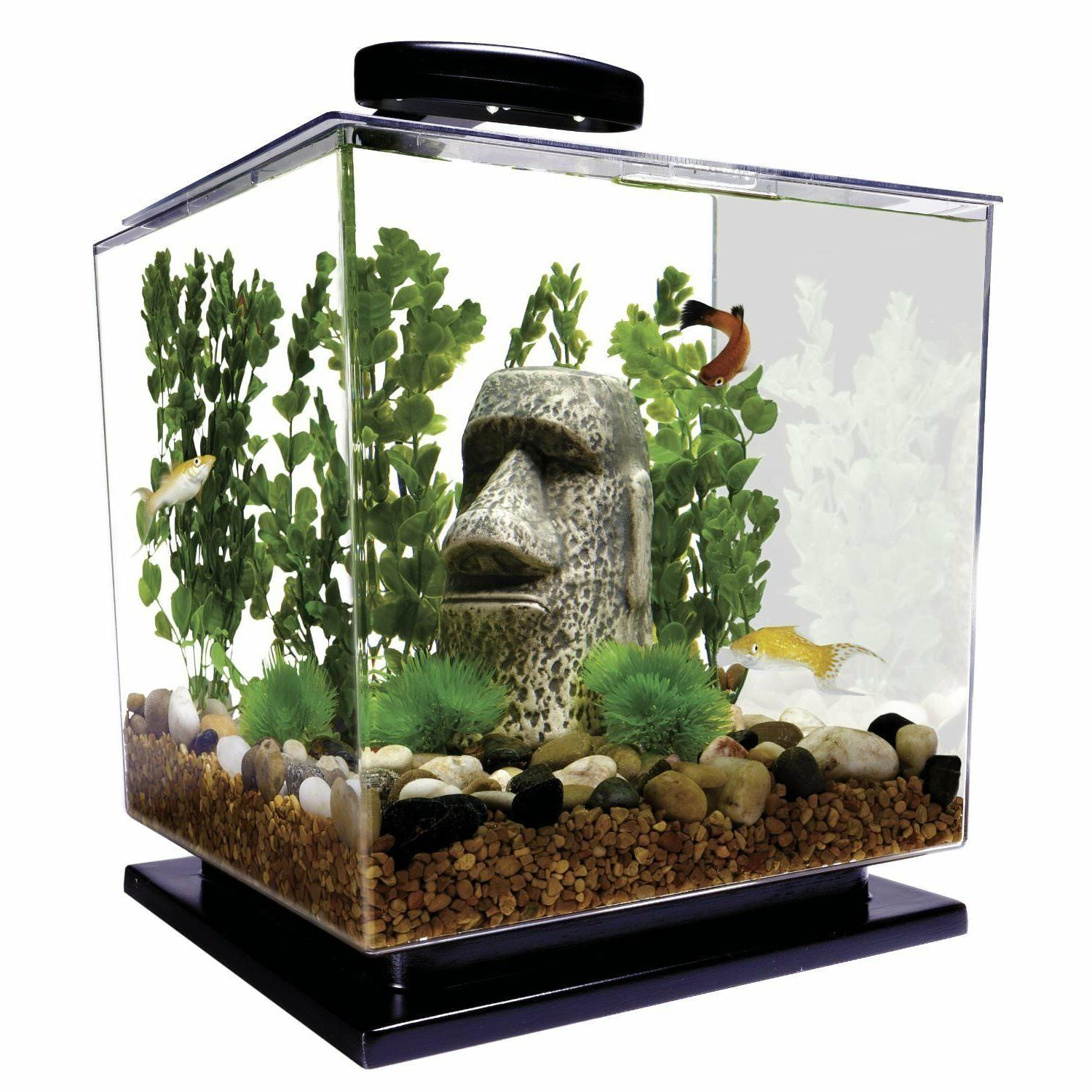 fish aquarium 3 gallon tank kit led