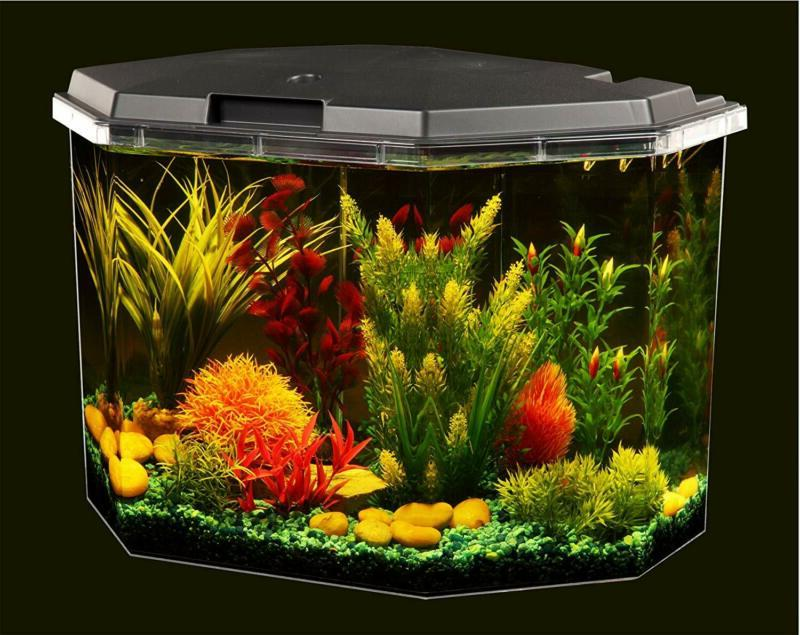Fish 6.5 Gallon Filter Clear Acrylic with Lightin