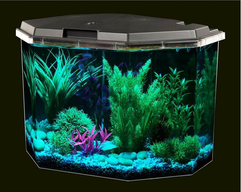 Fish Aquariums Gallon with Clear with Lightin