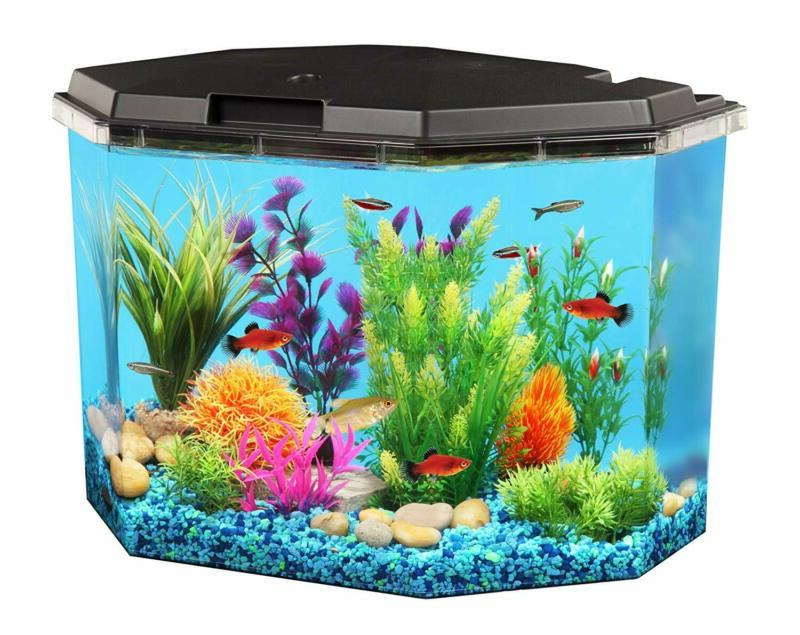 fish aquariums tanks 6 5 gallon