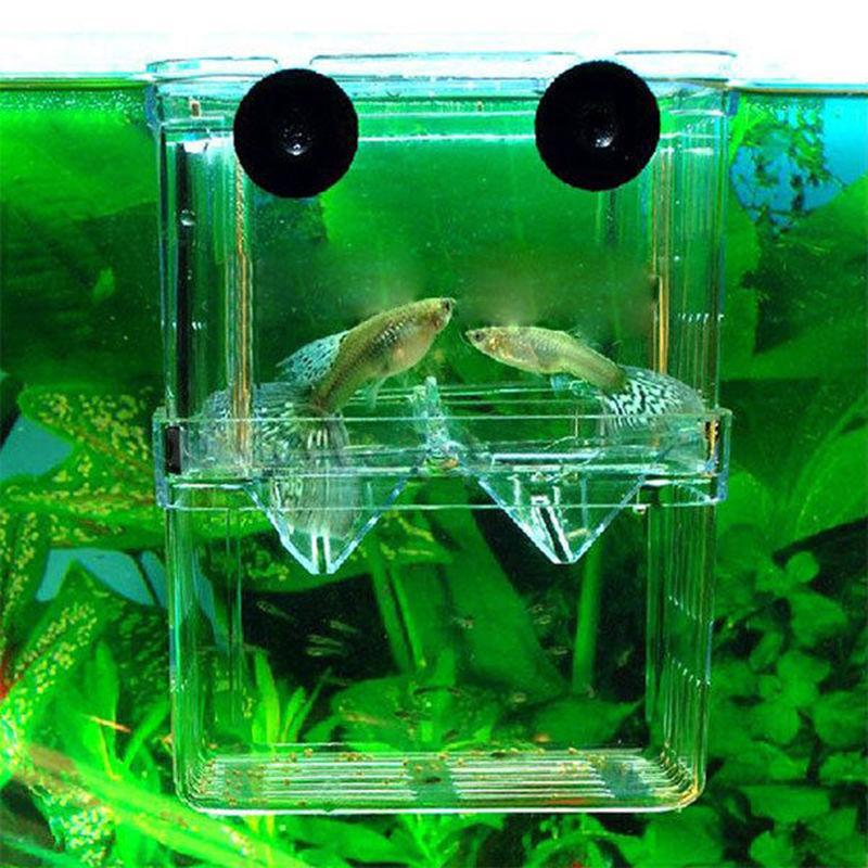 Fish Aquarium Tank Incubator Breeder Clear
