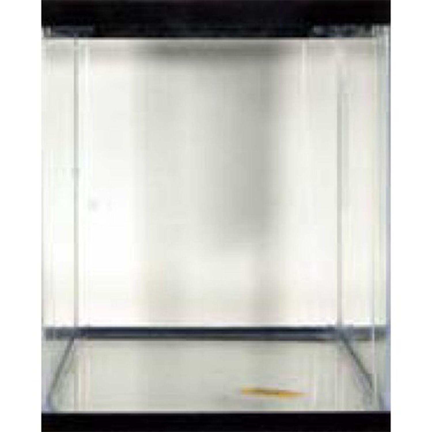 Aquarium Clear Pet Aqua Home Fishes