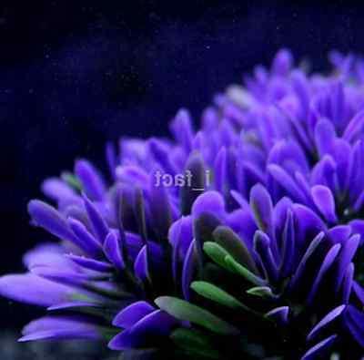 Fish Aquarium Accessories Artificial Purple Plastic