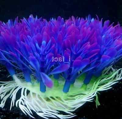 Fish Accessories Plant Purple