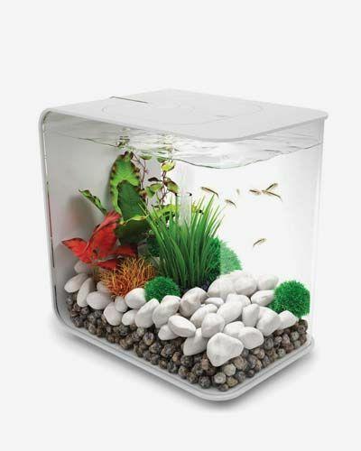 flow 30 by oase aquarium kit