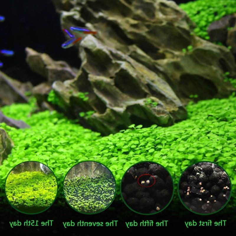 <font><b>Aquarium</b></font> Plant Aquatic <font><b>Water</b></font> Decoration Easy Planting Fish